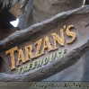 Location - Tarzan Treehouse